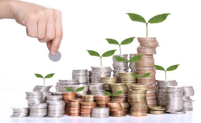Pelatihan Analisis Investasi Publik, Training Analisis Investasi Publik